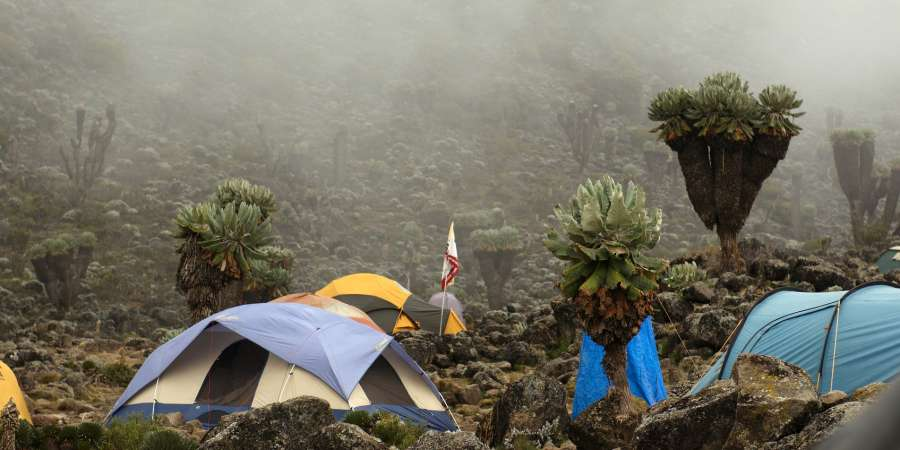 Misty Camp part way up Kilimanjaro