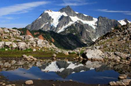 Mt Shuksan reflected in a small pond