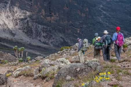 A-small-group-descending-to-Barranco-Camp,-Kilimanjaro