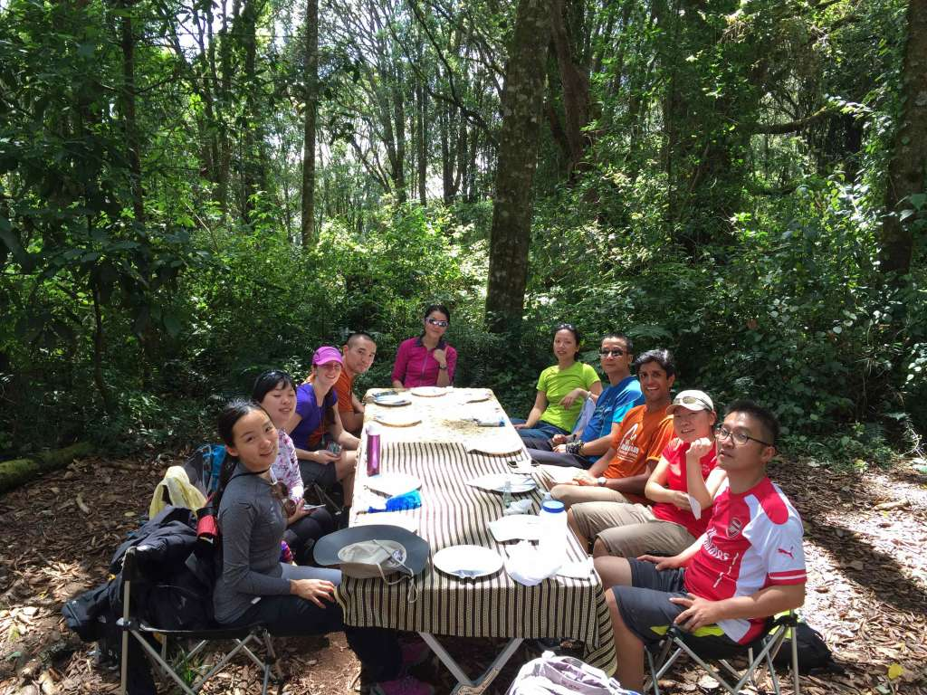 Scenic lunch spot on Machame Route (Day 1)