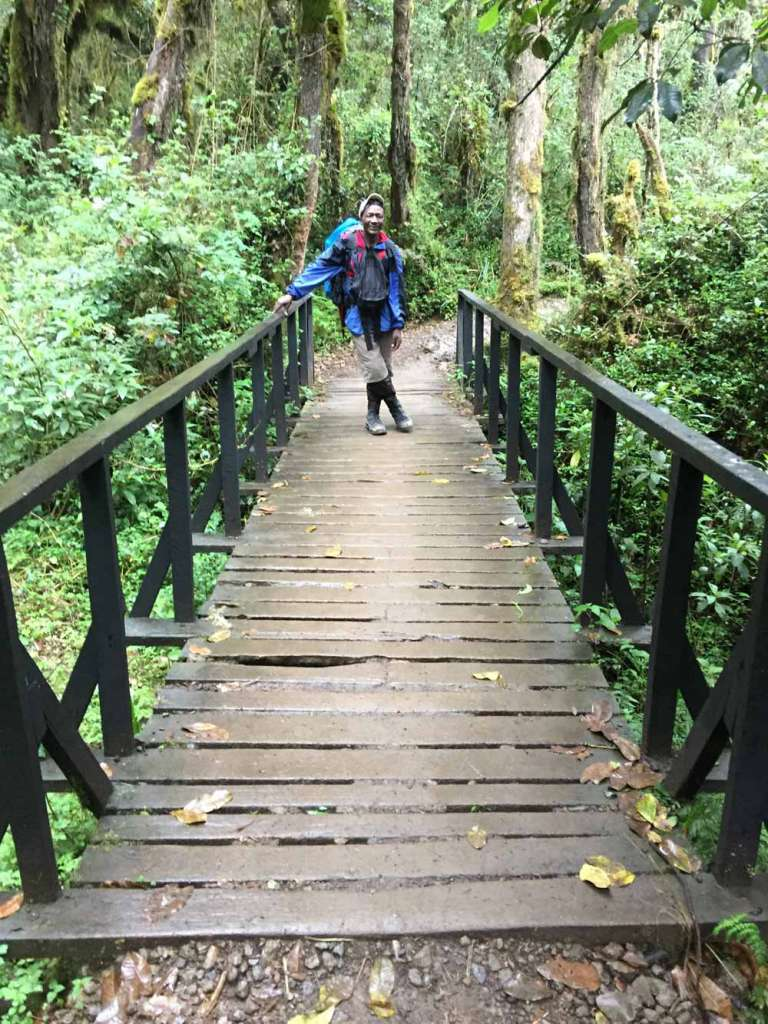 Porter on wooden bridge en route Mweka gate (Day 6)