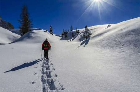 Snowshoeing in the Pale di San Martino Natural Park. Italy